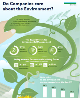 ViewPoint survey - do companies care about the environment infographic