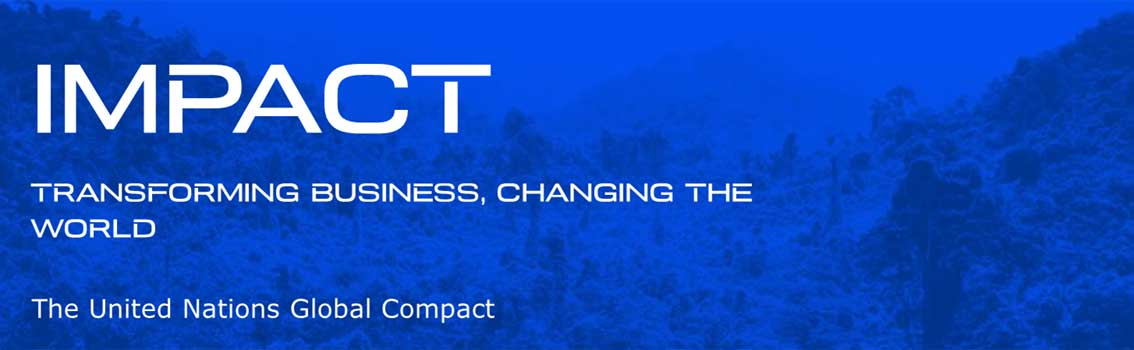 IMPACT: Transforming business, changing the world