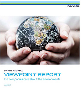 iewPoint survey Summer 2017 - Do companies care about the Environment report front page