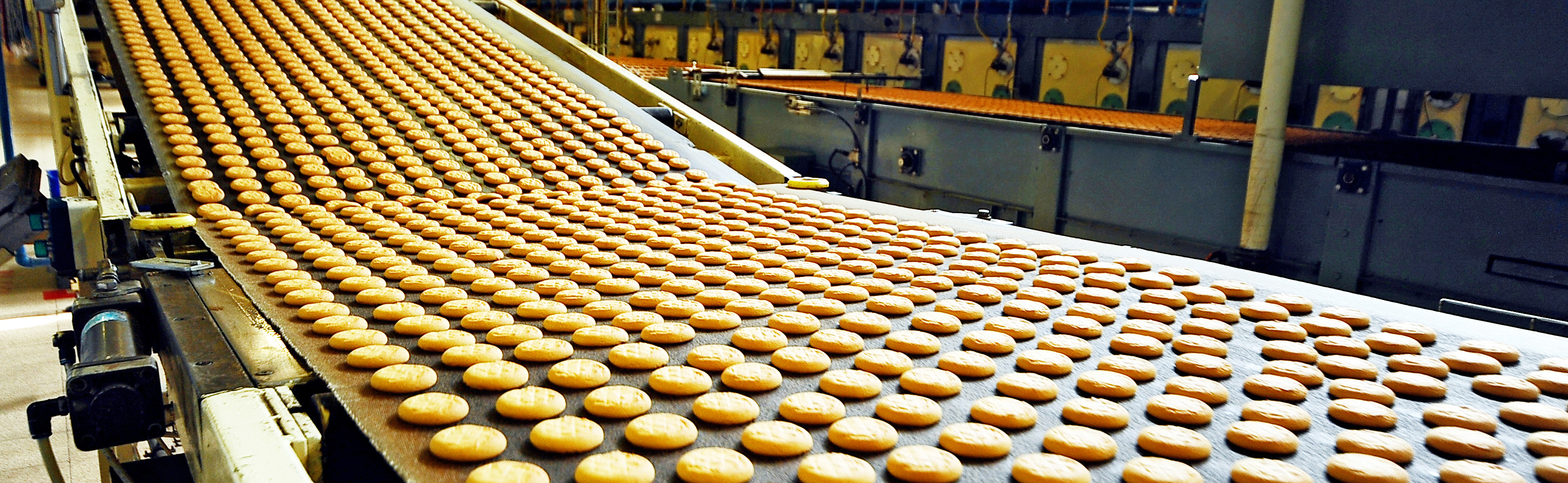 Cookies production line food safety